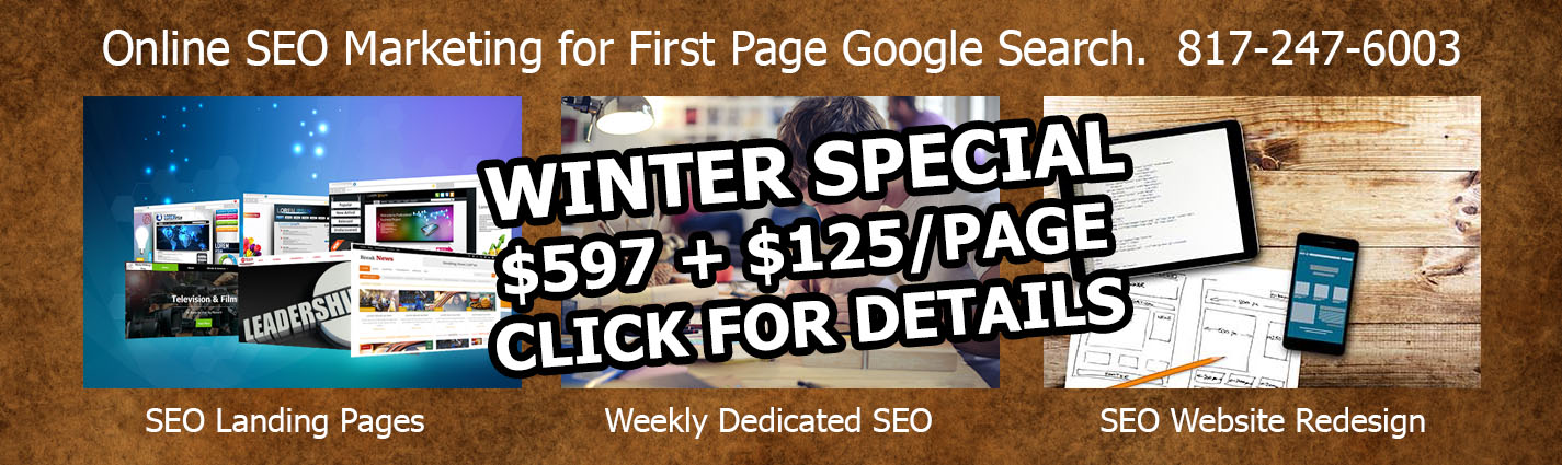 DFW Website Designers Winter Special