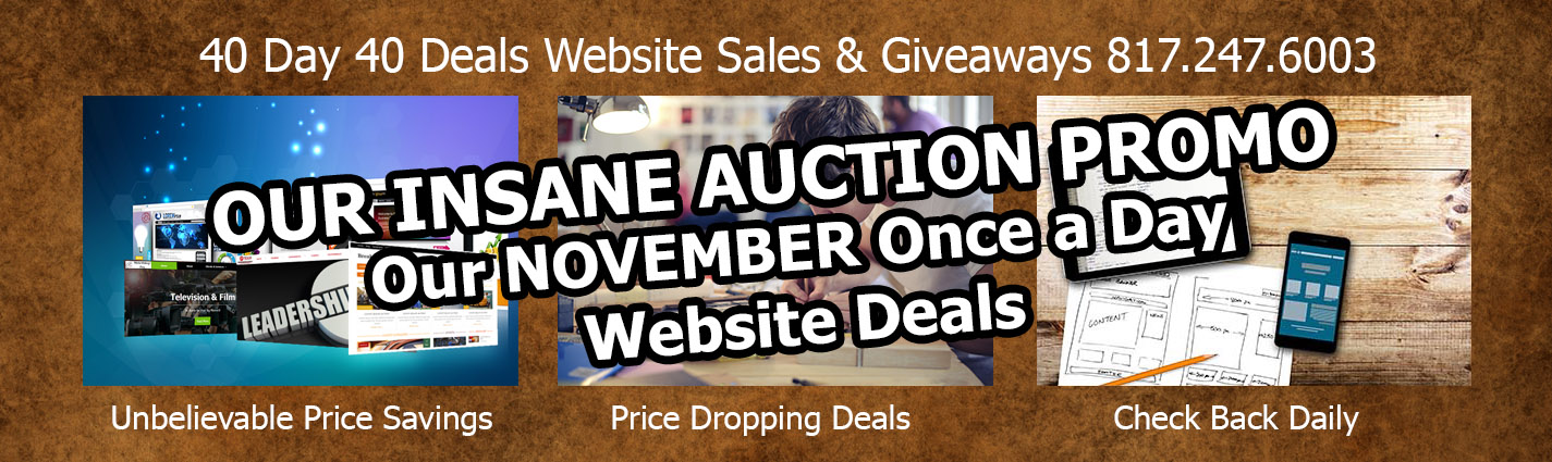 Our 40 Day Insane Website Sale
