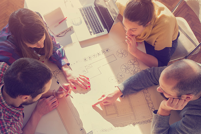Your Web Design Team